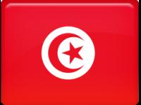 Диплом Туниса - нострификация